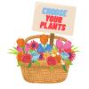 Select 4 Plants